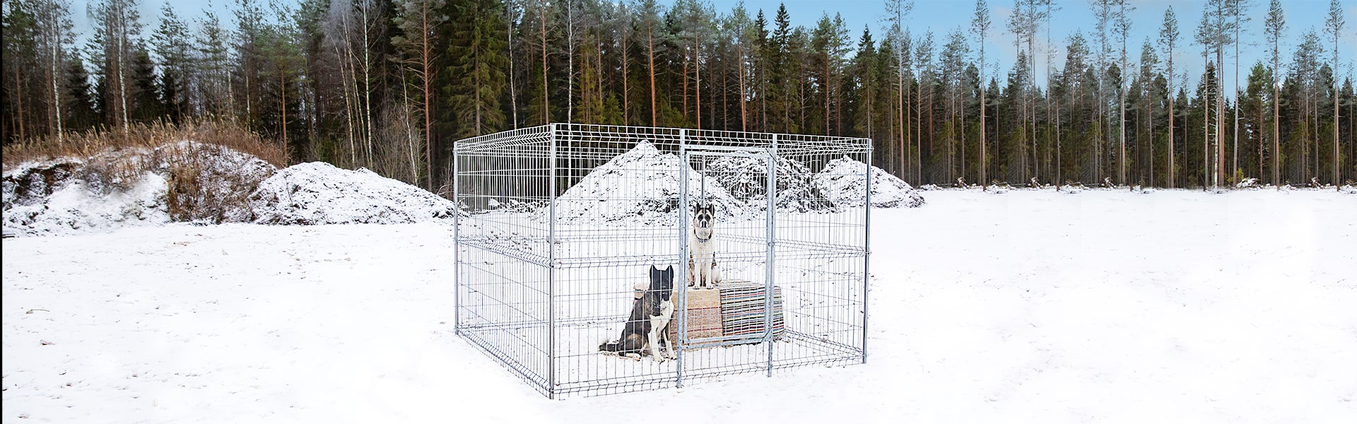 Dog enclosures
